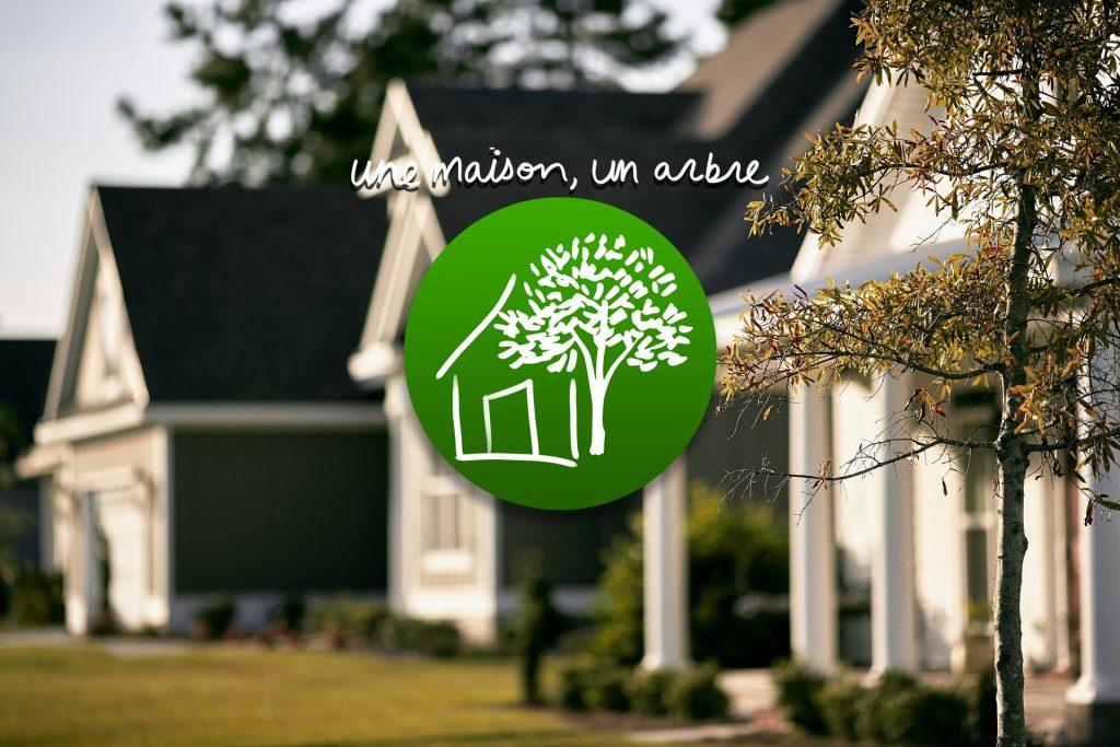 programme maison arbre